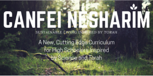 A New, Cutting Edge Curriculum Inspired by Science and Torah (1)